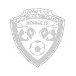 FC Liwodruck Carinthians Spittal